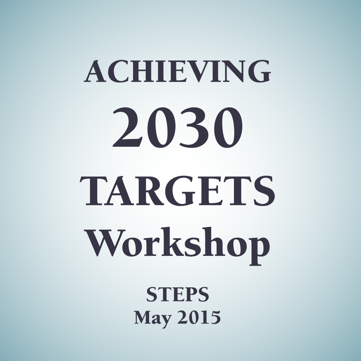 Achieving 2030 Targets Workshop